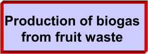 fruit waste