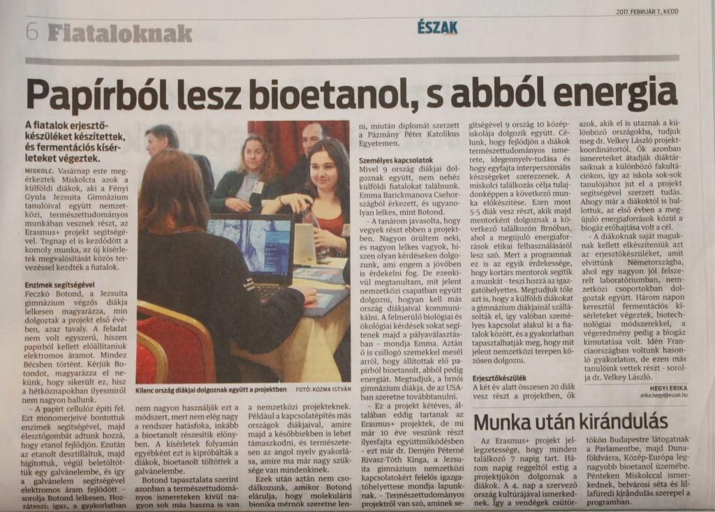 Zeitungsartikel_bearbeitet_2-min
